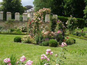 Beautiful rose garden, Abbaye de Chaalis, Paris region, France