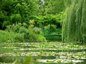 Giverny waterlily pond, Paris region, France