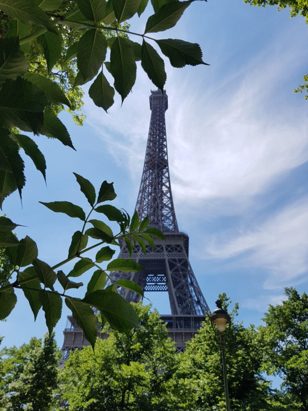 Eiffel Tower Paris in the summer