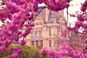 Pariisin kevättä Tuileries puistossa Louvre taidemuseon edustalla